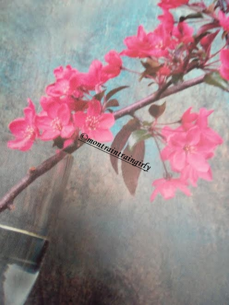 fleurs tableau scenolia.jpg
